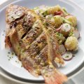 Grilled tilapia with horseradish potato salad